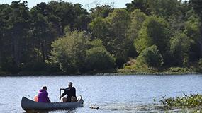 Freshwater Ponds