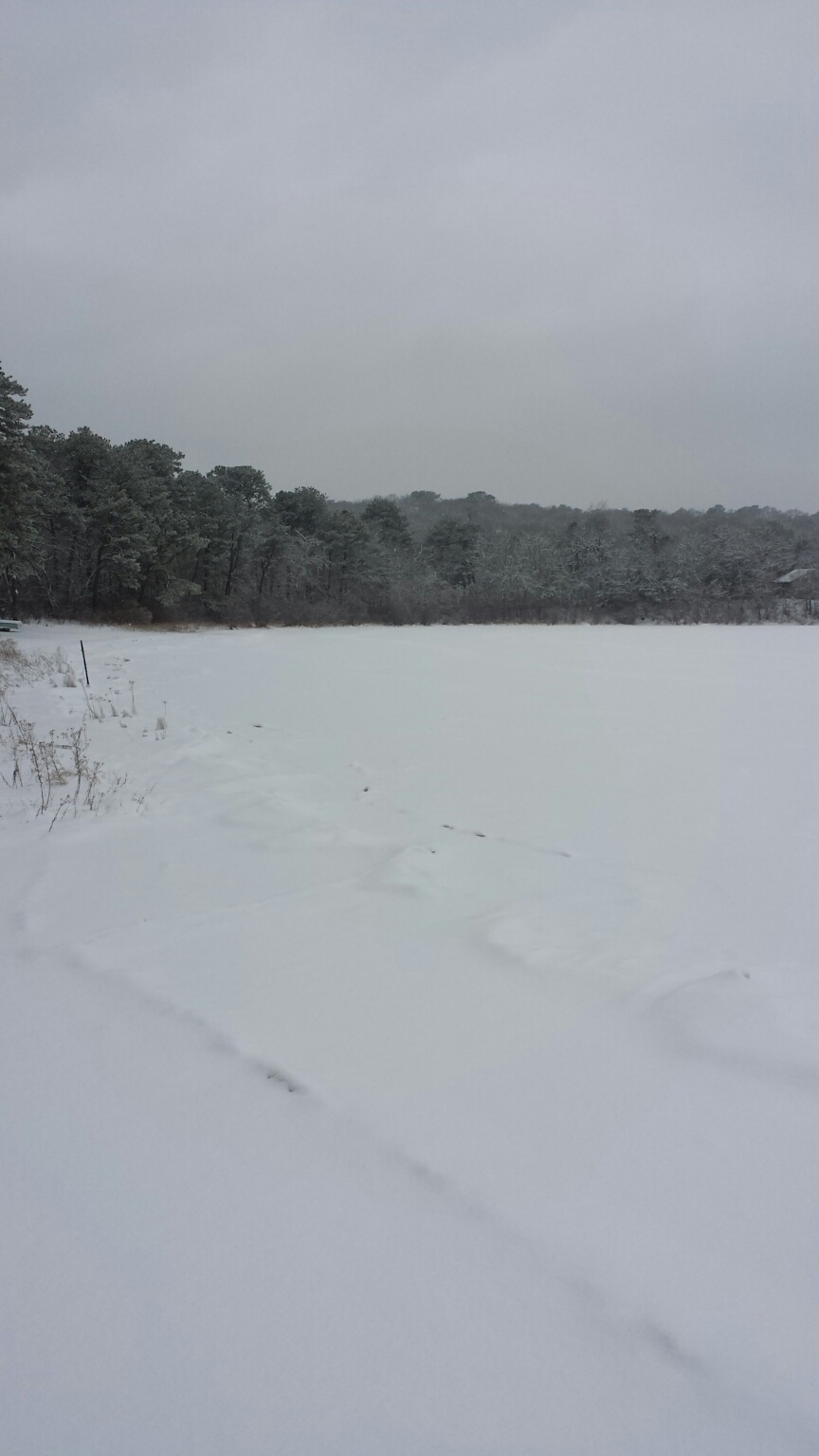 Frozen Baker's Pond