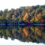 Image Baker's Pond