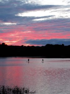 Paddle boarders at Baker's Pond