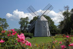 Jonathan Young Windmill